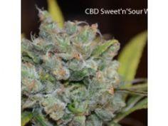 Seedsman CBD Sweet 'n Sour Widow Regular Seeds