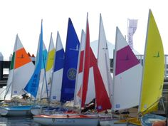 Sailability Hiroshima Peace Cup 2012