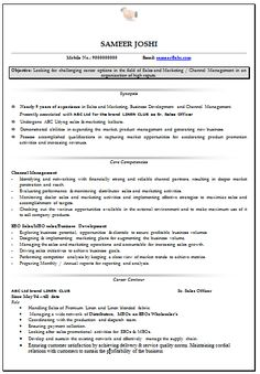 Professional Curriculum Vitae / Resume Template For All Job Seekers Sample  Template Of An Excellent Sales