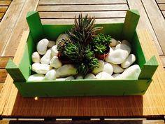 Caja de fresas pintada con spray,piedras y cactus