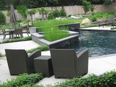 Water Clover Plant in Foreground // Planters with Horsetail Reed by AgscapesPhotos, via Flickr