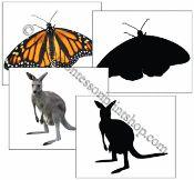 Animals and Silhouette Cards - Printable Montessori Materials