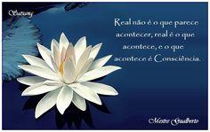 Real no es lo que parece suceder, real es lo que pasa, y lo que sucede es la Conciencia.\\\\  Real is not what seems to happen. Real is what really happens, and what happens is Consciousness. \\\Satsang Mestre Gualberto