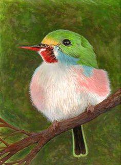 """View """"The Cuban Tody Bird"""" Image at BirdsandBlooms"""