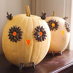 i love these owl pumpkins