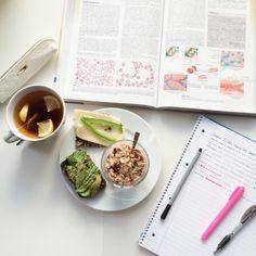 studydiaryofamedstudent: Study Hard