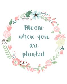 Bloom where you are planted – Free Digital Print (8×10″) Download bloom-where-you-are-planted – Enjoy!