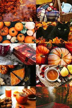 Autumn mood board collage inspiration