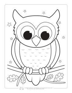 Birds Coloring Pages for Kids - Itsy Bitsy Fun Owl Coloring Page for Kids Free Kids Coloring Pages, Penguin Coloring Pages, Coloring Pages For Teenagers, Kindergarten Coloring Pages, Spring Coloring Pages, Flower Coloring Pages, Coloring Pages To Print, Free Printable Coloring Pages, Coloring Pages For Kids