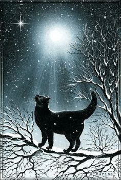 Black cat, I do pray, Bring me luck-- And bless my way. I Love Cats, Crazy Cats, Cool Cats, Warrior Cats, Black Cat Art, Black Cats, Black Cat Painting, Animal Gato, Image Chat