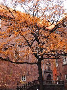Stockholm Sweden – A Life Well Lived