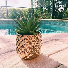 Pineapples are in season. Studded with a gleaming diamond texture, this metallic vase abstracts the pineapple—a classic symbol of hospitality. Tactile vessel is handcast of stoneware and aluminum-plated with a brass finish to reflect every 3D angle.