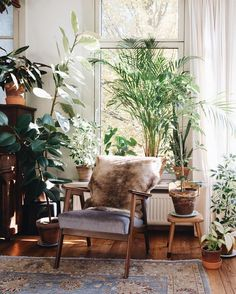 Comfortable Urban Bohemian Living Room Design Ideas - Page 31 of 50 Minimalism Living, Room With Plants, House Plants, Interior And Exterior, Interior Design, Patio Interior, Bohemian Living, Bohemian Man, Bohemian Style