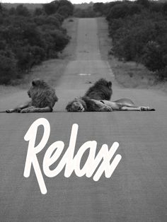 . . relax . .