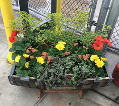 Lowe's garden center decorating