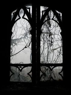 """"""" Inverno Gotico, 2010 - © Jonny D.G Via The Macabre And the Beautifully Grotesque """" Dark Photography, Black And White Photography, Deco Nature, Dark Images, Southern Gothic, Vampire, Gothic Art, Macabre, Dark Art"""