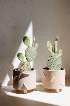 Dash Planters /