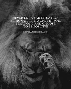 Apj Quotes, Lion Quotes, Real Life Quotes, Reality Quotes, Badass Quotes, Wisdom Quotes, True Quotes, Words Quotes, Motivational Quotes