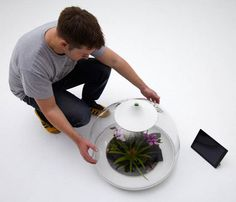 glass terrarium containers with computer monitoring system