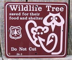 Forest Service - Wildlife Tree sign