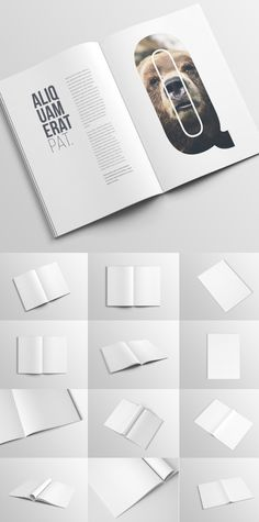 50 Best Branding, Stationery PSD Mockups for Designers