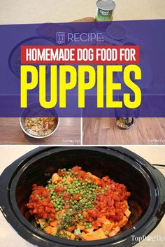 Homemade Dog Food for Puppies Recipe (Healthy and Easy to Make) food recipes crockpot cheap 13 Best Puppy Foods: Our 2020 In-Depth Guide with Answers to FAQs Dog Biscuit Recipes, Dog Treat Recipes, Healthy Dog Treats, Dog Food Recipes, Healthy Recipes, Healthy Food, Puppy Food Homemade, Best Puppy Food, Make Dog Food