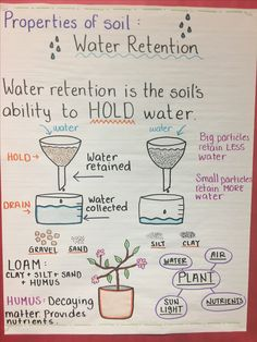 Water retention in soil anchor chart Science Anchor Charts, Kindergarten Anchor Charts, Kindergarten Science, Science Classroom, Teaching Science, Science Activities, Science Labs, Science Geek, Fourth Grade Science