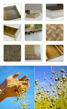 """""""No Compromise Biocomposites"""": e2e Materials' Miraculous Wood Substitute  Posted by hipstomp 