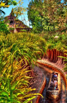 Guests through the briar path at Splash Mountain. Photo by Kevin Crone #disney #imagineering