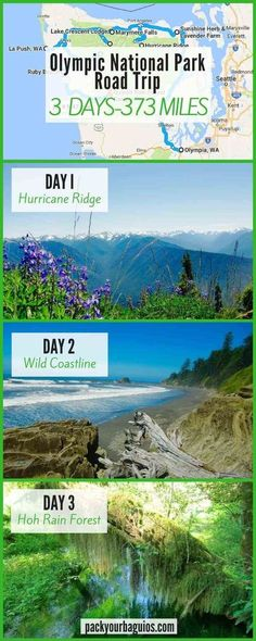 National Park Road Trip Olympic National Park Road Trip, a fun travel adventure in Washington State.Olympic National Park Road Trip, a fun travel adventure in Washington State. Alaska, La Push Beach, Places To Travel, Places To See, Voyage Usa, Hurricane Ridge, Autumn Lake, Just Dream, Us National Parks