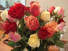 roses (88 pieces)