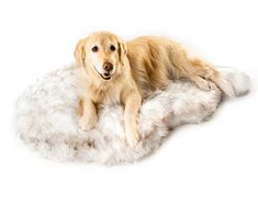 Puprug Faux Fur Memory Foam Orthopedic Dog Bed, Premium Memory Foam Base, Ultra-Soft Faux Fur Cover, Modern and Attractive Design (Large/Extra Large - L X W, White Curve) Best Orthopedic Dog Bed, Orthopedic Pillow, Dog Pillow Bed, Pet Beds, Dog Mom, Memory Foam, Pet Supplies, Your Dog, Dog Lovers