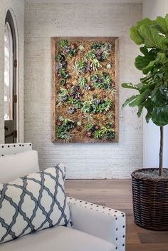 Succulents. Succulent wall. Farmhouse entry with Succulent Wall and whitewashed brick wall #Succulents Tracy Lynn Studio