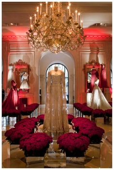 ELIE SAAB celebrates the debut of Fashion Week with a spectacular exhibition at the Hotel George V in Paris. The Haute Couture evening gowns have been put on show like precious royal jewels, encircled with thousands of white and red roses.