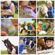 #Dierendag komt eraan! Dit vieren wij natuurlijk met de #kids en #dieren op onze #boerderijen! Boek nu een #safaritent op farmcamps.nl & kom #dierendag vieren op de #boerderij met je eigen #huisdier!  Van #hond, #kat, #cavia tot en met je #pony, ze zijn allemaal van harte welkom! Couple Photos, Couples, Animals, Couple Shots, Animales, Animaux, Couple Photography, Couple, Animal