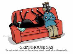 Greynhouse gas, by Richard Skipworth