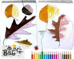 Atividades educativas – Trabalhando simetria com folhas!