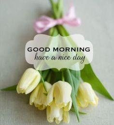 Buongiorno!