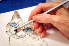 Great idea!  Seniors painting pix of rescue animals in need of adoption.