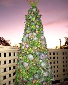 That one time we made a 6' Tall Succulent Christmas Tree... 🎄huntcollectiveltd.com