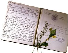 Olga's Diary || like her father Nikolay II she preferred diaries in black and very simple covers. After The Romanovs' murder in The Ipatiev House there were found dried flowers in the diaries of Nikolay II's daughters . Their assassins got the order to collect all things that belonged to Nikolay II's family and pass them to the special Bolskeviks' Committee engaged in secret services. So flowers survived through the time and now they are kept in The State Archives in Moscow