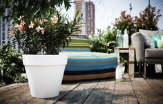 Modern Contemporary flower pots in big sizes with water reservoirs and wheels online at potstore.co.uk