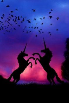 Unicorns in the sunset