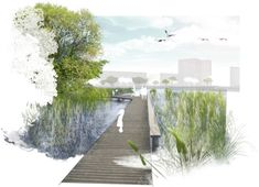 2. Preis Wettbewerb aspern Seepark...competitionline