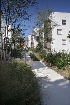 le jardin central