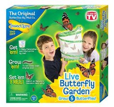 Inspire Learning in Your Home with a #InsectLore Butterfly Garden
