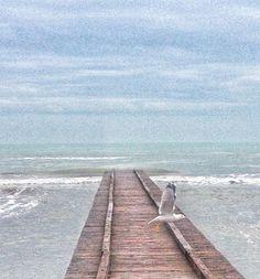 Мое сегодня красивое...  Люблю такие бирюзовые оттенки    #море#пляж#италия#как#она#есть#моя#жизнь#italy#italia#mylife#life#lifestyle#sea#beach#birds#goodmood#instagood#instamood