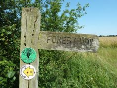 Essex Walks Epping Forest District Walking Route The Forest Way Signpost http://www.walksandwalking.com/2012/07/walks-and-walking-essex-walks-epping-forest-district-walking-route/