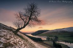 https://flic.kr/p/TPs1oQ | Winter Over St Mary's Loch | Winter Over St Mary's Loch  One from a couple of months ago and a beautiful winters morning up above St Mary's Loch.  Some great colour and light at sunrise, such a stunning view when the conditions are this good.  St Mary's Loch, Scottish Borders  Sony A7RII  Sony FE16-35mm f4   All rights reserved © Brian Kerr Photography 2017