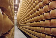 the maturing of cheese  Parmigiano -Reggiano are arranged in long rows and let it sit on wooden planks .  In this way , the outer part of the cheese dries forming a natural rind , without treatments and totally edible .  The minimum ripening period is 12 months and it is at that point that only relevant forms of the examination of selection may continue to mature for 24 months or more .